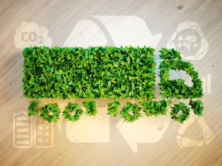 ekologiczna logistyka - koncept